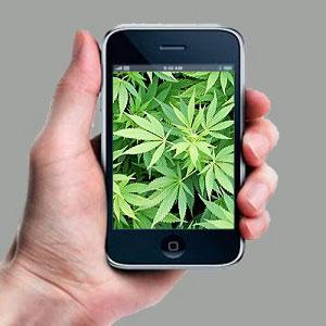 marijuana-phone