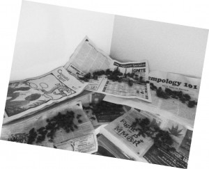Jamaican herb drying on incredible newspaper