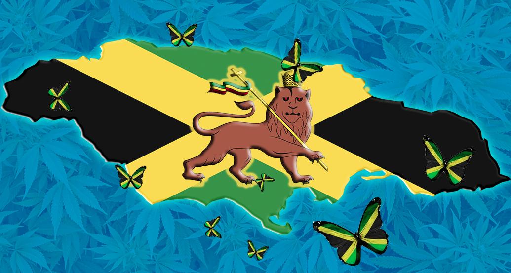 jamaica amnesty gfpa