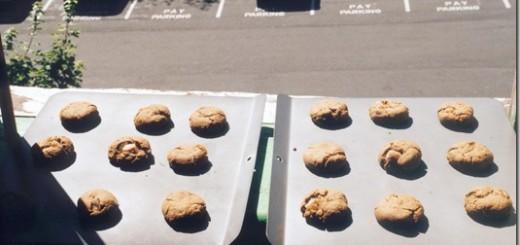 cookies_cooling_thumb.jpg