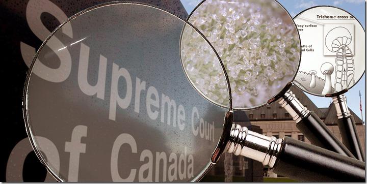 SCOC-JUDGES