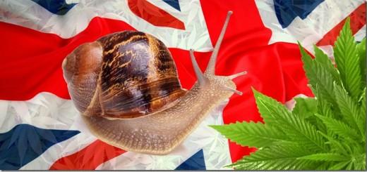 UK-Slow_thumb.jpg