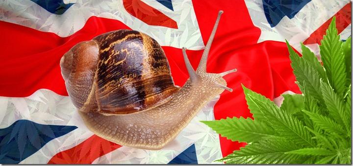 UK Slow
