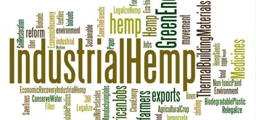 Industrial-Hemp-Cloud_thumb.jpg