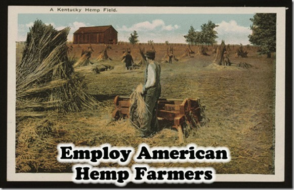 employ-American-Farmers-Hemp-farm