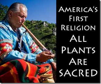 all_plants_are_sacred