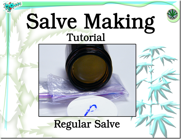 1. Salve Tutorial