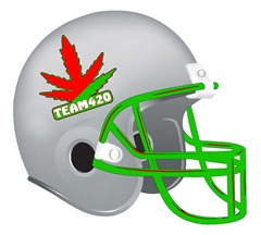 Team420 Helmet