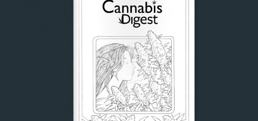 digest-cover