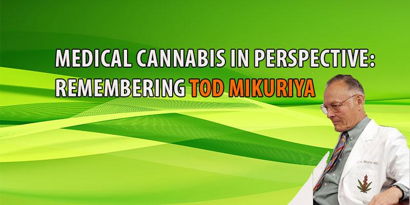 Cannabis Tod