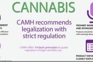 cannabis_infographicthin2_thumb.jpg
