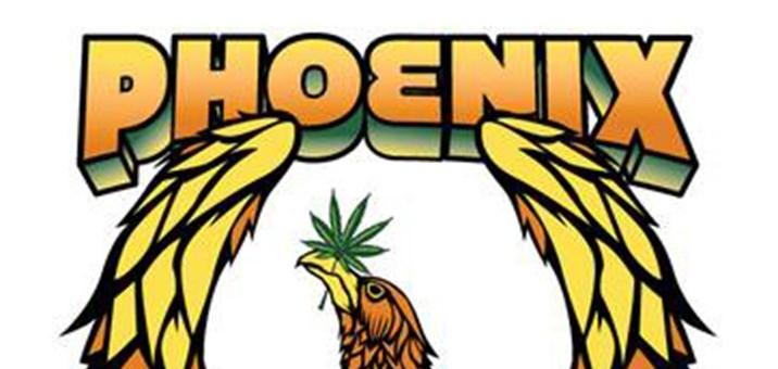 phoenix-pm-societythin_thumb.jpg