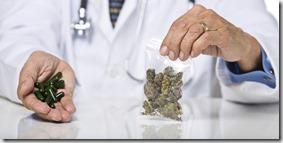 doctor_cannabis
