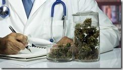 l_doctor-marijuana_1200x675