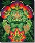 cannabis spitiruality