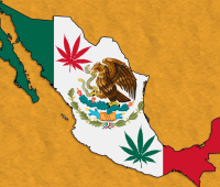 mexico_flag_map