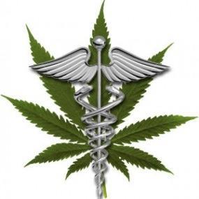 cannabis caducius