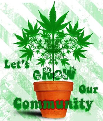 northern ireland_cannabis_community