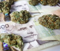 venture-capital-startup-loans-angel-investors-lines-of-credit-cannabis-in-canada