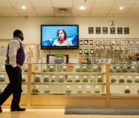 Reasons Why We Need Cannabis Dispensaries